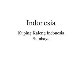 Indonesia Distributor